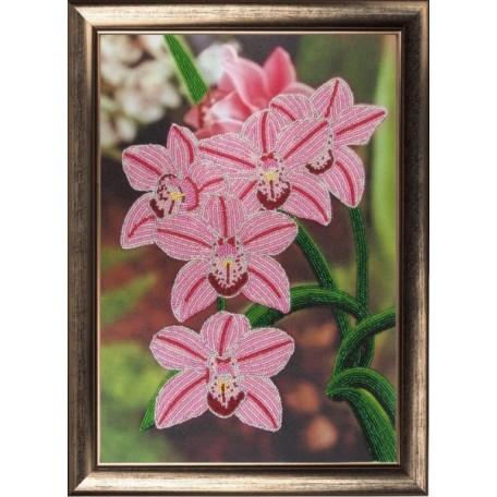 Набор для вышивания BUTTERFLY арт. 208 Орхидеи 36х25 см