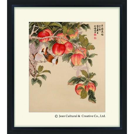 Набор для вышивания крестом Xiu Crafts арт.XC.123 Поспевшие яблоки 42х50 см