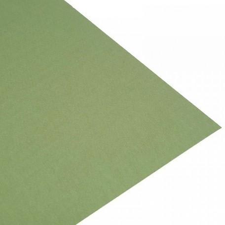 GM.52551014 Бумага для пастели Tiziano Мох 160гр 50х65 см