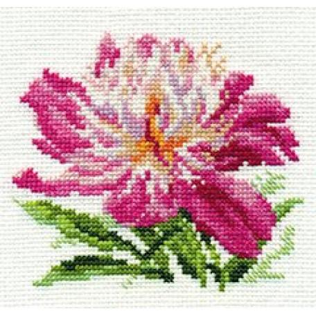Набор для вышивания арт.Алиса - 0-119 'Розовый пион' 10х11 см