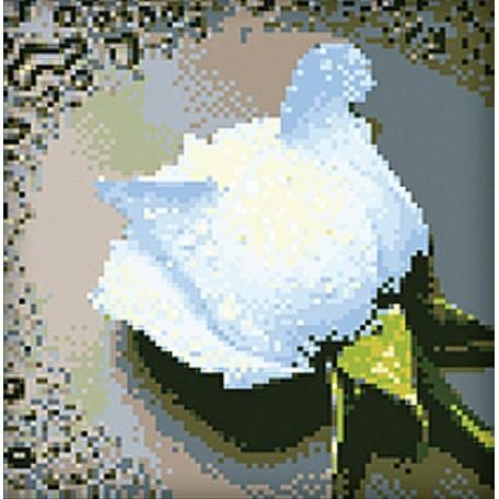 Набор для изготовления картин 'АЛМАЗНАЯ ЖИВОПИСЬ' арт.АЖ.024 'Белая роза' 25х25 см