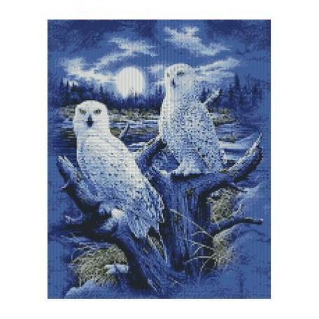 Набор алмазной живописи с подрамником 'Алмазная вышивка' арт.СК-631(П) 'Ночные птицы' 40х50 см