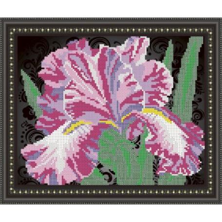 Наборы для вышивания бисером Арт Соло арт. NK-4106B 'Ирис на черном' 20,5х25