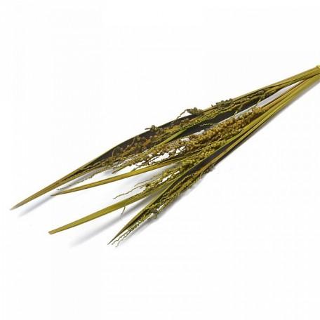 SBU.0067 Коко боут с соцветием цв.зеленый 75см уп.5 шт