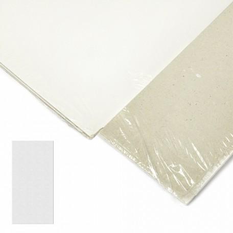 Картон грунтованный 2 мм, 20*40 см, односторонний, арт.ИМ.204020 упак.3 шт.