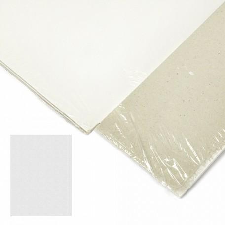 Картон грунтованный 2 мм, 30*40 см, односторонний, арт.ИМ.304020 упак.2 шт.