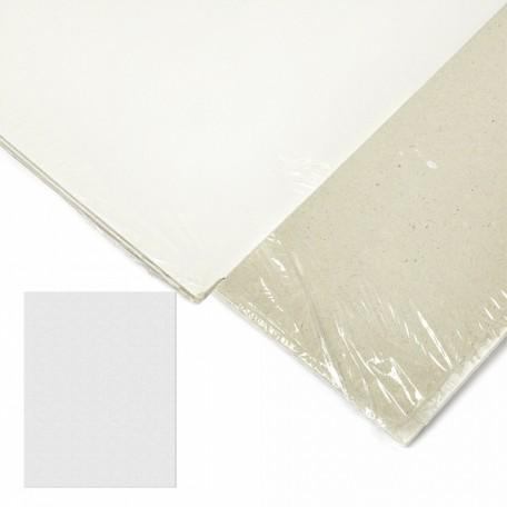 Картон грунтованный 2 мм, 35*45 см, односторонний, арт.ИМ.354520 упак.2 шт.