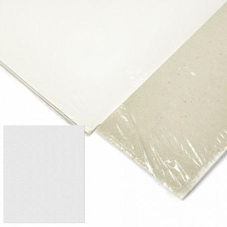Картон грунтованный 2 мм, 50*60 см, односторонний, арт.ИМ.506020