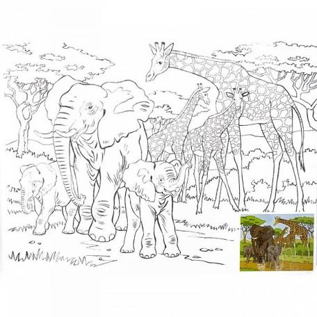 Холст на картоне НП арт.DK13701-M с контуром Слоны и жирафы 30х40 см