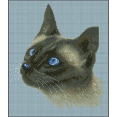 Канва с рисунком 'НОВА СЛОБОДА' арт.ММ2021 'Сиамская кошка DMC' 28х33см