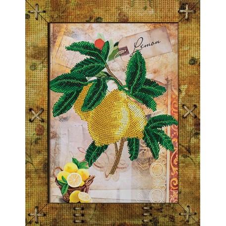 Наборы для вышивания 'НОВА СЛОБОДА' арт.ОР 5515 'Фрукты. Лимон' 16,5х21,5 см