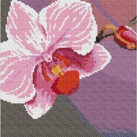 Набор для вышивания 'Орнамент' арт. ВЦ-010 Пано 'Орхидея 1' 20х20