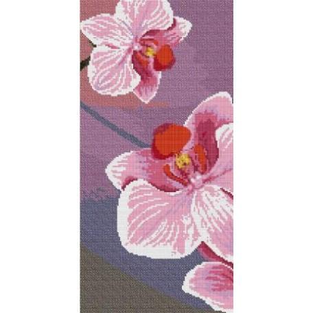 Набор для вышивания 'Орнамент' арт. ВЦ-011 Пано 'Орхидея 2' 19х39