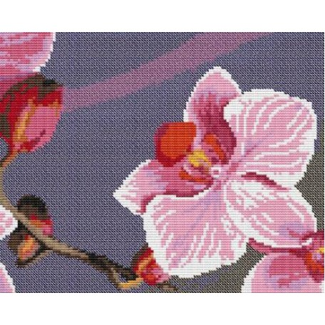 Набор для вышивания 'Орнамент' арт. ВЦ-013 Пано 'Орхидея 4' 24х19