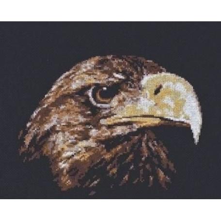 Набор для вышивания 'Палитра' арт.02.003 'Взгляд орла' 26*22 см