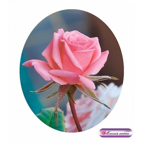 РТ130064м Папертоль 'Роза мини' 8х10см