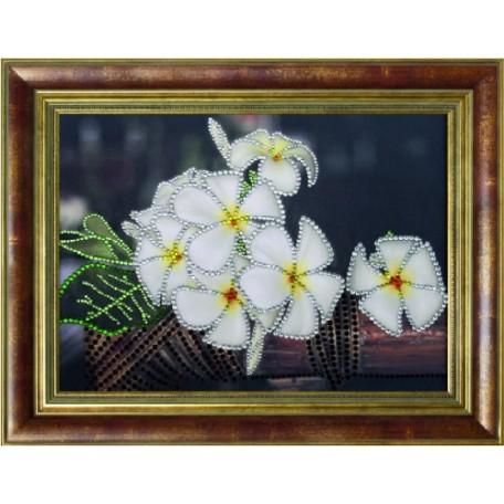 Набор 'ПРЕОБРАНА' арт.ПРБ-0120 для изготовления картины со стразами 'Тропический аромат'
