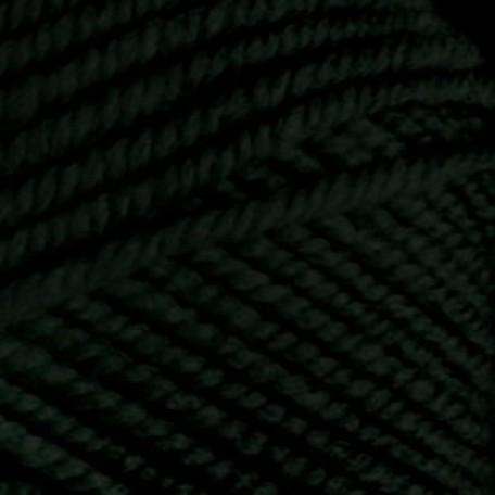 Пряжа для вязания 'Arina' Арина ПШ 10х100гр/123м цв. т.зеленый 62