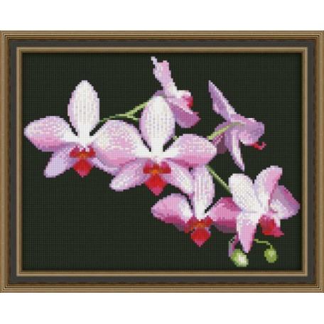 Набор для вышивания 'Юнона' арт.0116 'Ветка орхидеи' 22,5х17,5см