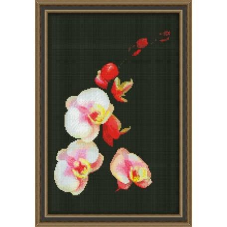 Набор для вышивания 'Юнона' арт.0118 'Розовая орхидея' 20х31см